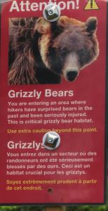 Bärenschild